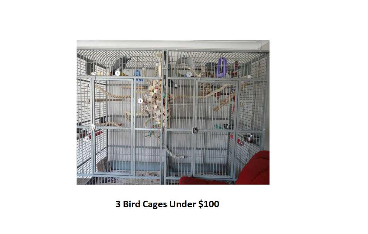 3 Best Cages Under $100