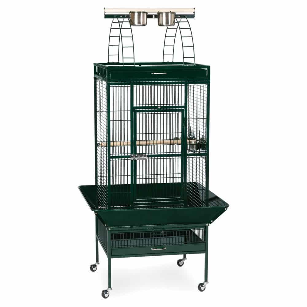 Prevue Pet Products Select Wrought Iron Cockatiel Cage