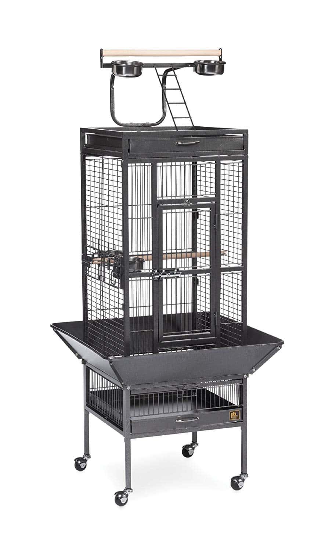 Prevue Pet Wrought Iron Bird Cage