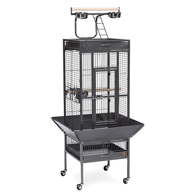 Prevue Pet Products Select Wrought Iron Best Cockatiel Cage